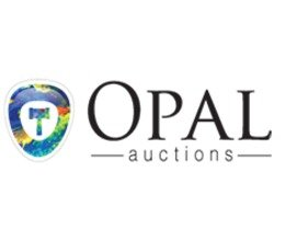 OpalAuctions.com promo codes