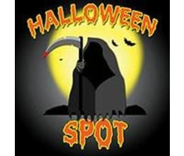 TheHalloweenSpot.com coupon codes